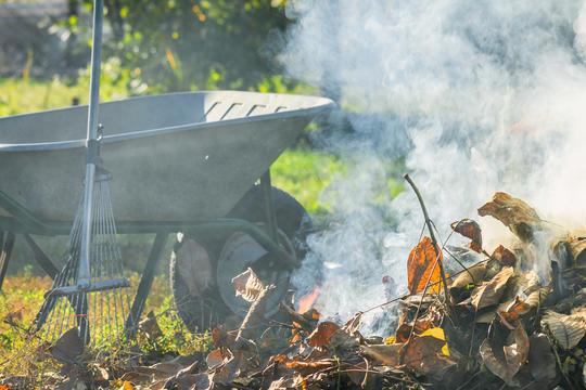 Фото горящих бытовых отходов на дачном участке